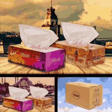 TULIN 100 Facial Tissue Cartons