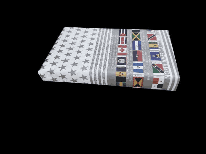 North America Countries and Flags Gift Wrapping Paper