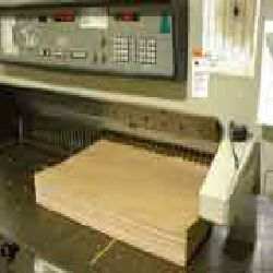 Die Cutting/Guillotine Cutting Services