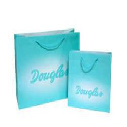 Paper Bags- Sky Blue Color