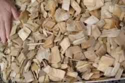 Wood Chips (Mix Tropical / Hardwood / Eucalyptus)