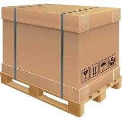 Unbleached Folding Box Board (FBB)