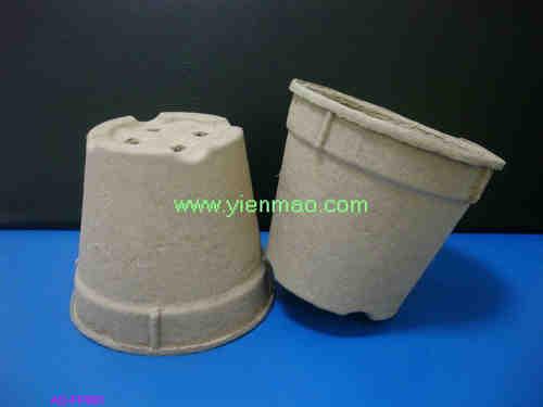 paper seeding pots