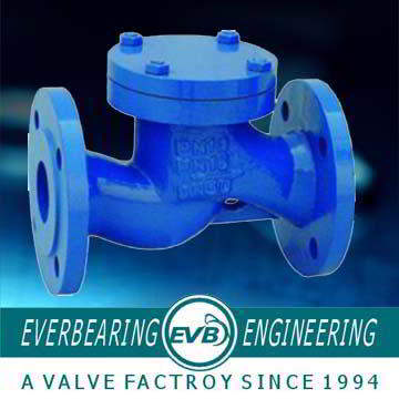 Cast Iron PN16 Check Valve