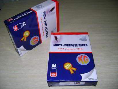 Multi Purpose Premium Paper A4 80gsm/75g
