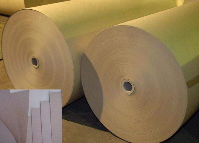 Kraft Liner Board & White Top Liner